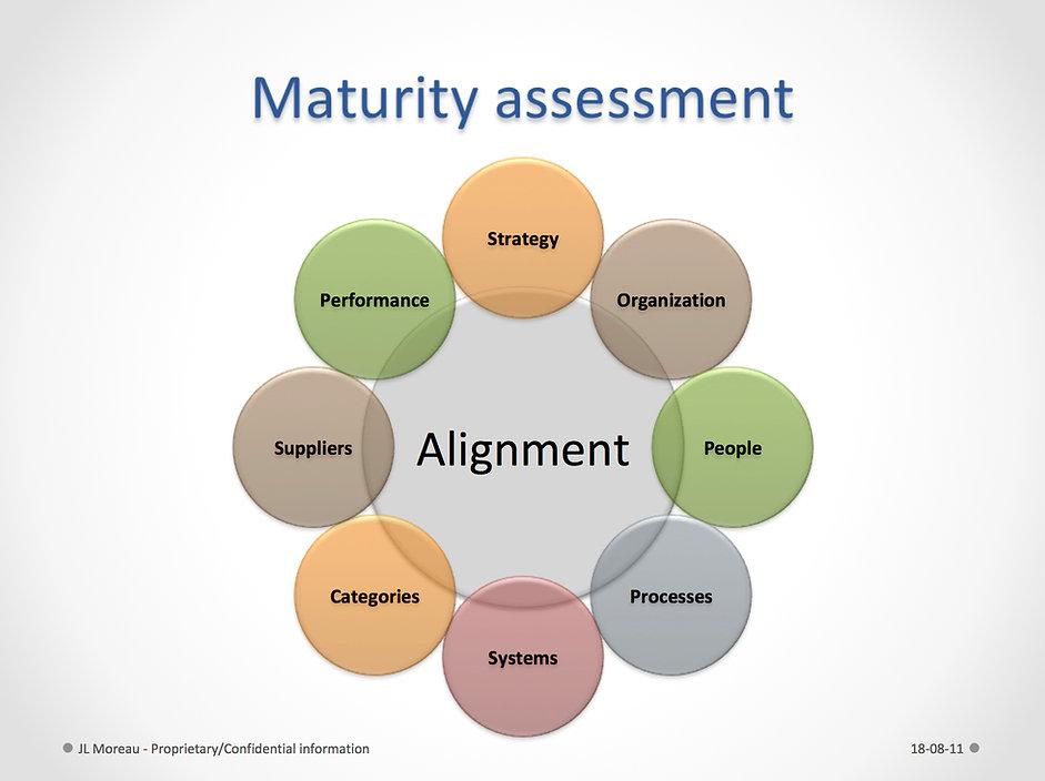 Maturity Assessment.jpg