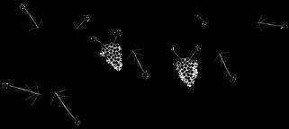 Vine-image2.png