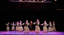 flamenco20