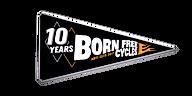 10Yr-Logo-Pennant_edited.png