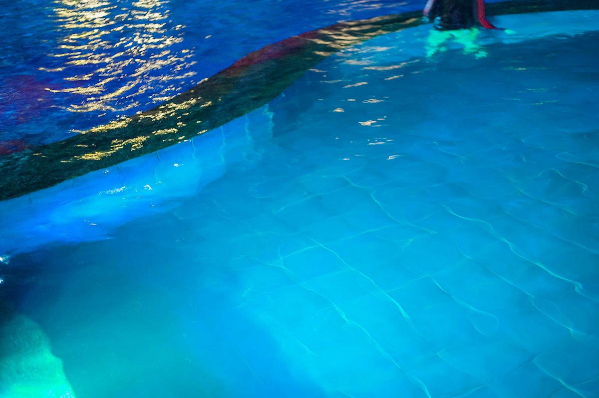 2-Into The Pool # 2 copia.jpg