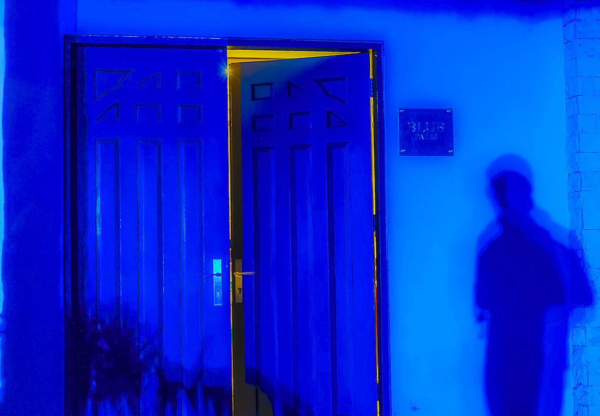 6-Blue Palm copia.jpg