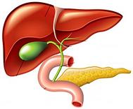 胆摘2-2.PNG