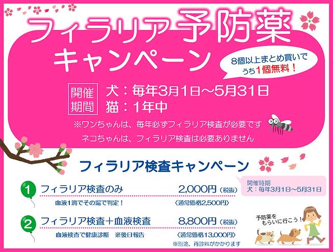 2021.02.21 フィラリア予防薬キャンペーン.PNG