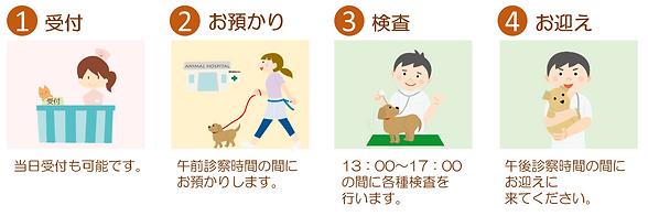 健診の流れ イラスト.PNG