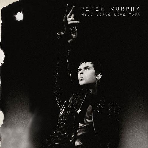 Peter Murphy: Wild Birds Live Tour