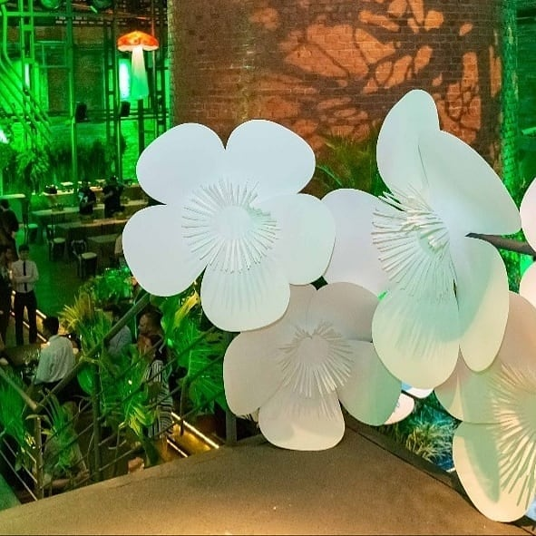 Flores de 1 metro de diâmetro