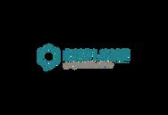 logo displayce.png