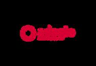 logo adagio.png