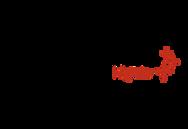 Logo Capital Data.png