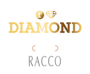 banner_diamond_academy.png