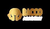 logo_academy_novo_branding_rasterizado_h