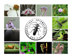 Photo contest winners 2015 Calendar