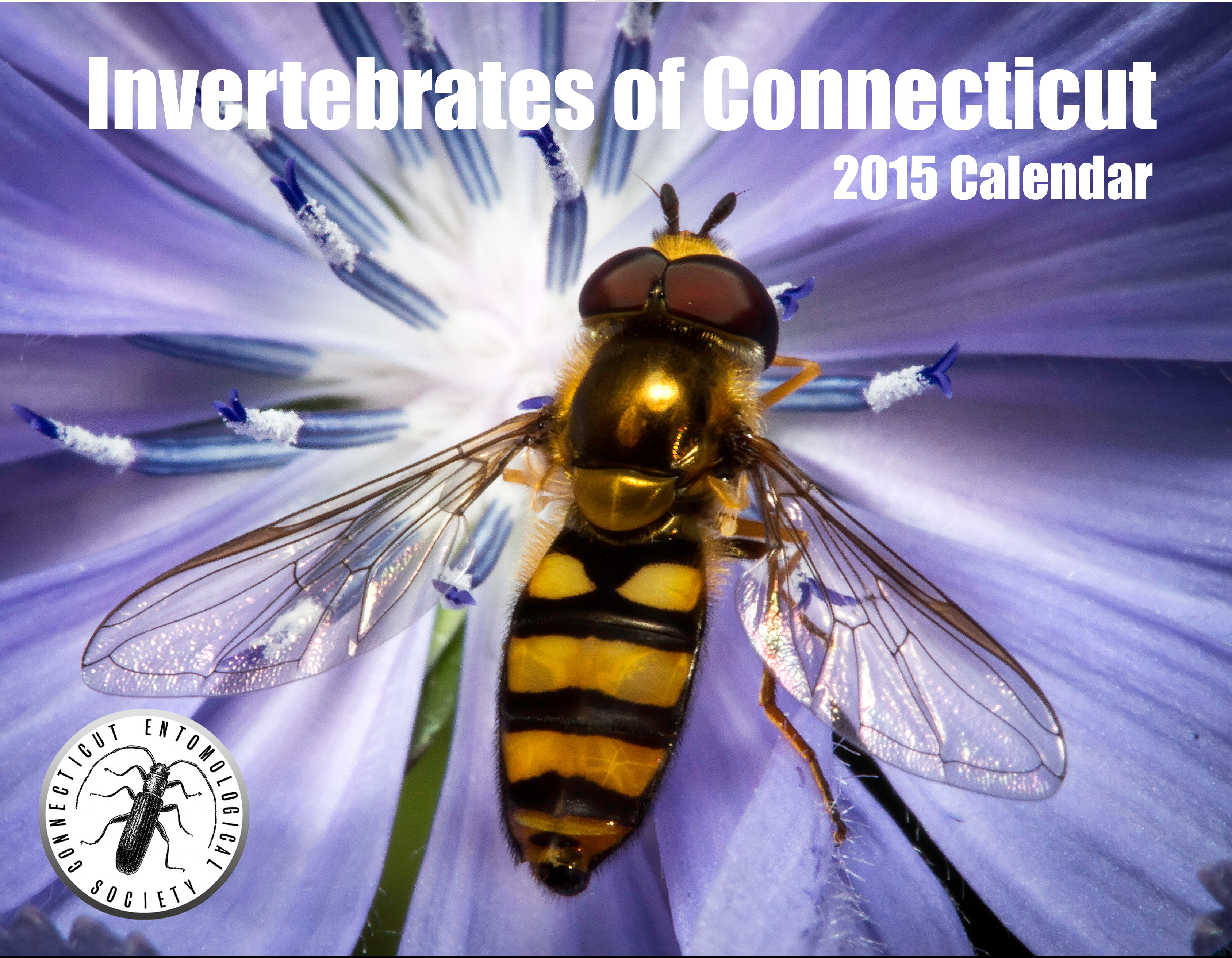 Photo contest winners 2015 Calendar