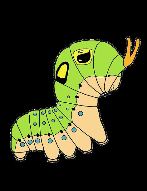 swallowtail butterfly caterpillar papilio green eyespot