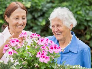 O cuidador e a pessoa cuidada