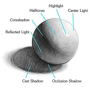Light-on-Form-shading-diagram.jpg