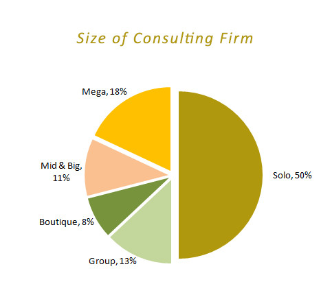 firme mici de consultanta vs firmele mari de consultanta