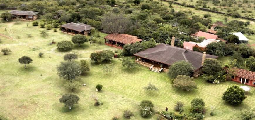 Sculpture Safari in Kenya