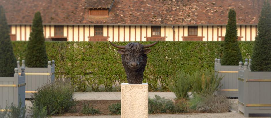 Life Size Bull Head Sculpture