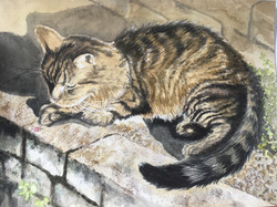 Watercolour painting of a tortoiseshell cat on a sunny garden wall.