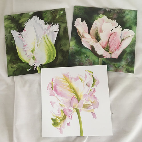 Pale Tulips set of 3 cards