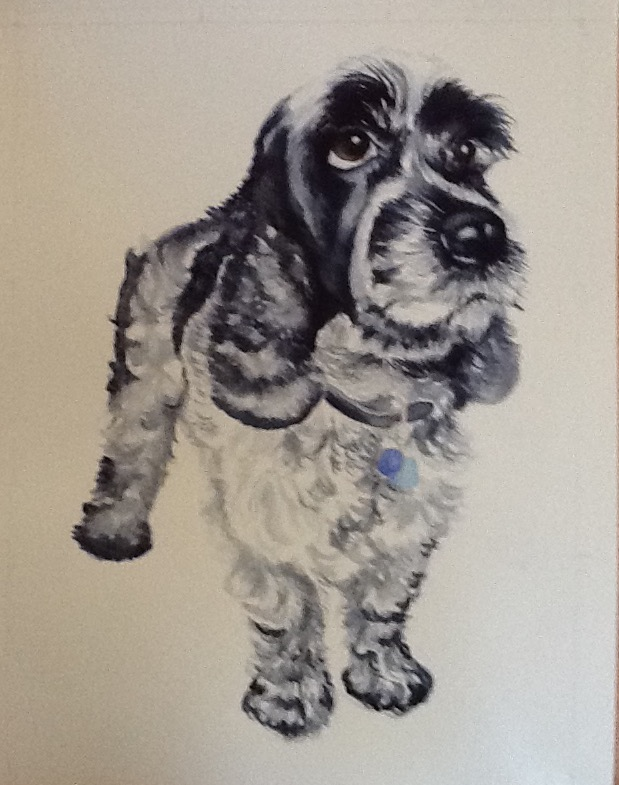 Watercolour portrait painting of a grey spaniel.