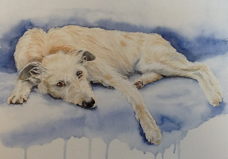 Watercolour painting of an Irish Wolfhound lounging along a sofa.