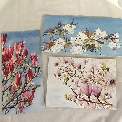 Spring Blossom set of 3 cards