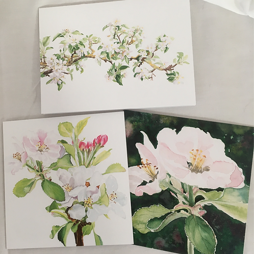 Apple Blossom set of 3 cards