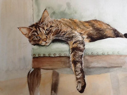 Watercolour painting of a tabby cat lying on a chair