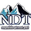 NDT Google Logo - Square copy.png