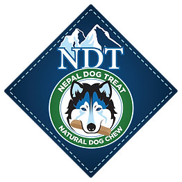 NDT-Logo.png