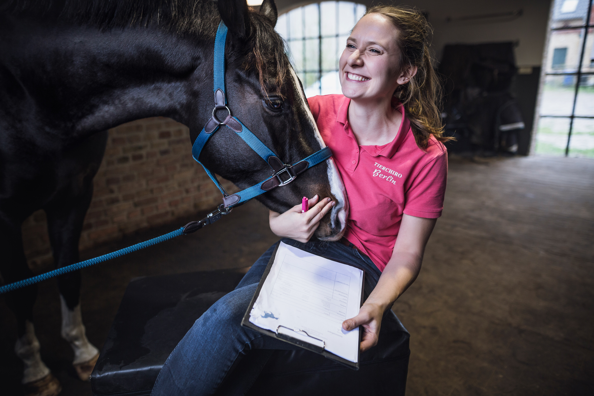 Chiropraktik Pferd.jpg