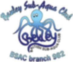 982 Octopus_small.jpg