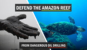amazon-reef-fb-share-image.jpg