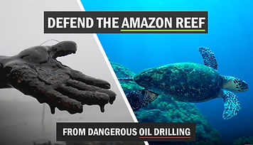 amazon-reef-fb-share-image.jpg