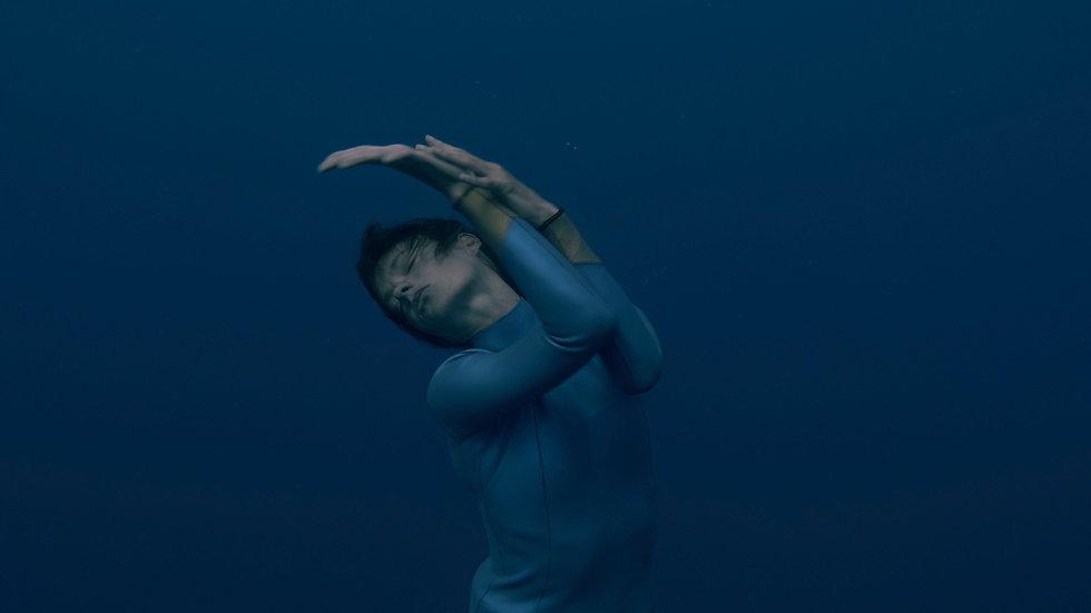 Marine Chesnais, habiter le seuil, danse, danse contemporaine, apnée, danse bio inspirée, bio inspiration, bio mimetisme, grand bleu, océan, mer, one breath, vivant, nature