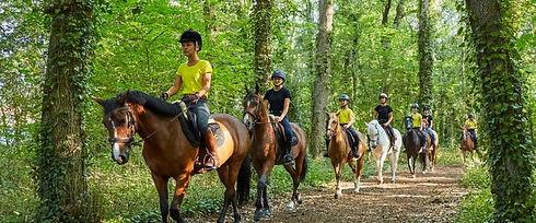 campingalaska-balade a cheval-promenade