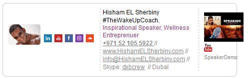 Hisham EL Sherbiny Contacts