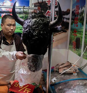 1_CHINA-HEALTH-VIRUS.jpg