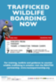 Posters_FINAL Boarding Now.png