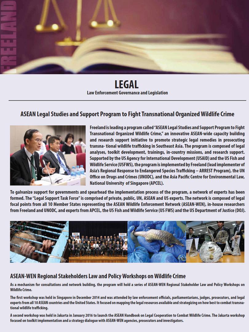 LEGAL flyer