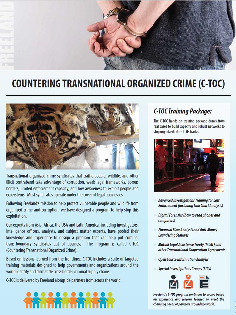 CTOC flyer