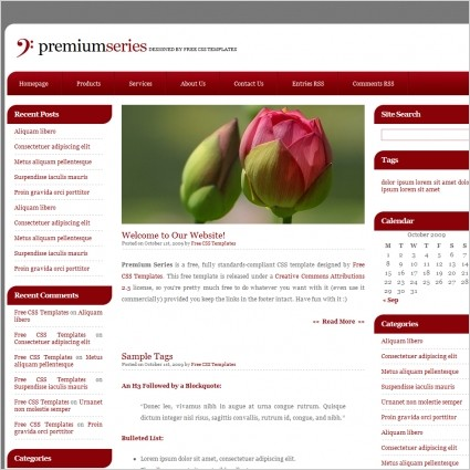JRL-Enterprises LLC Web Templates10141