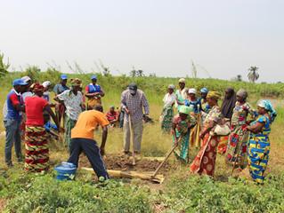Formation en permaculture des femmes leaders des groupes VSLA de GATUMBA