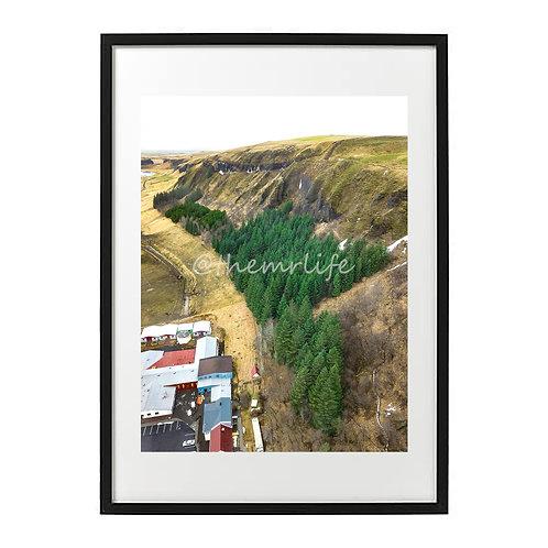 ICELAND TREELINE A2 PRINT