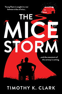 MICE STORM Ebook Cover.jpg