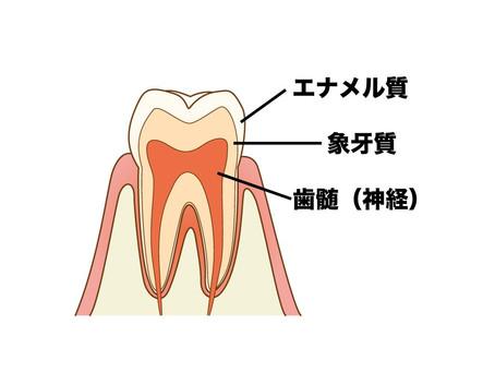 松山市の歯医者の目線でお話しする「なるべく削らない」虫歯治療