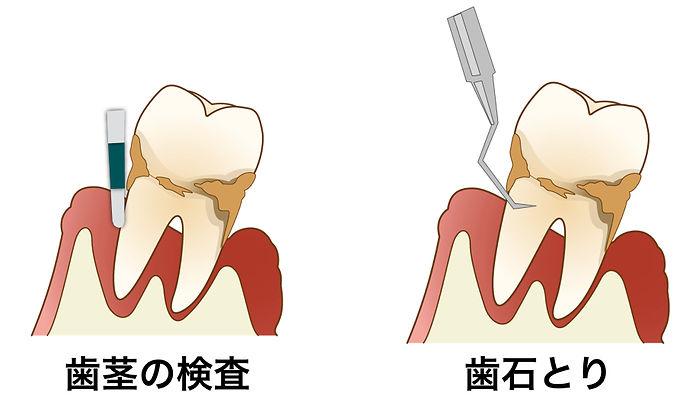 さとし歯科